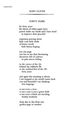 Forty Years by Mary Oliver, March 1996 Mary Oliver Poems, Poetic Words, Songs To Sing, Poem Quotes, Uplifting Quotes, Live In The Now, Staying Alive, Writing A Book, Beautiful Words