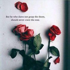 I'm full of thorns