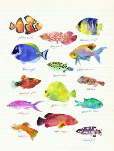 Nature - marcel george illustration - Lovely watercolor fish on ruled notebook paper. Watercolor Fish, Watercolor Animals, Watercolor Illustration, Watercolor Paintings, Gouache Painting, Nature Illustration, Illustrator, Sea Art, Sea Life Art