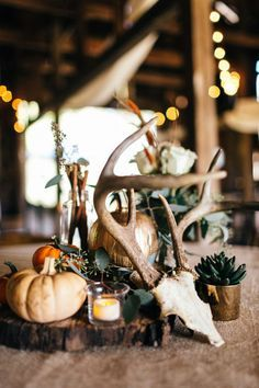 Rustic wedding centerpiece idea - fall-themed centerpieces with antlers, wood slices, succulents and mini pumpkins {Erin Morrison Photography}