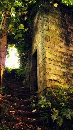 Old steps, Cragg Vale, Yorkshire