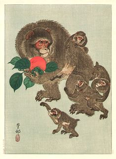 Ohara Koson (Hoson) - Monkeys and Persimmon - Japanese Woodblock Print (Wood block print, woodcut) Japanese Drawings, Japanese Artwork, Japanese Prints, Japanese Monkey, Japanese Animals, Monkey Drawing, Monkey Illustration, Ohara Koson, Japan Painting