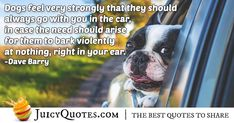 """Dogs feel very strongly that they should always go with you in the car, in case the need should arise for them to bark violently at nothing, right in your ear. Car Quotes, Poem Quotes, Daily Quotes, Best Quotes, Life Quotes, Animal Poems, Animal Quotes, Post Animal, Tuxedos"