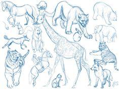 No se si a alguien puede llegar a interesarle, pero estos son algunos de los bocetos que estuve haciendo hace unos meses. Por lo general antes de hacer cualquier dibujo suelto la mano copiando foto...