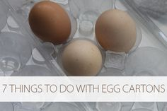 How to Reuse an Egg Carton - many more than 7 ideas here, more practical than crafty!