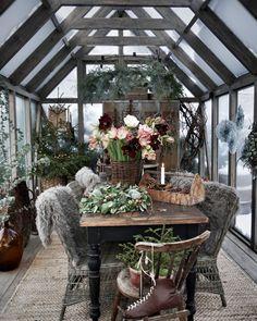 Bild könnte enthalten: Pflanze, Tisch, Baum und im Freien