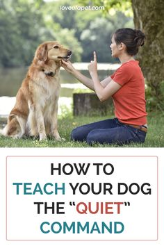 """How to Teach Your Dog the """"Quiet"""" Command: You first need to get him acquainted with the """"speak"""" command first and then gradually introduce """"quiet"""" command. #TeachDogQuietCommand #QuietCommand #SpeakCommand Puppy Training Classes, Service Dog Training, Dog Training Courses, Dog Training Videos, Best Dog Training, Brain Training, Puppy Trainer, Dog Training Techniques, Dog Language"""
