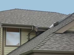 Protect your Roof from Birds Birds, Outdoor Decor, Home Decor, Decoration Home, Room Decor, Bird, Home Interior Design, Home Decoration, Interior Design