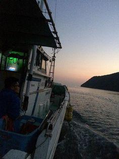 漁師さんに連れて行かせてもらったサバの夜釣り