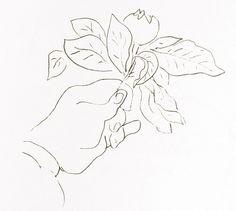 Henri Matisse Drawings