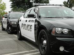 Arcadia PD Chargers by anonymousmxcn44, via Flickr, dark graphics, 2011.