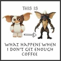 Coffee Quotes Funny, Coffee Humor, Funny Quotes, Teddy Bear, Shit Happens, Animals, Memes, Good Morning, Funny Phrases
