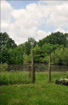Pond bates county, MO fishing by Bates County Real Estate