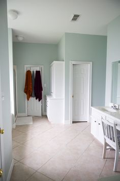 Sherwin Williams Sea Salt Design Ideas, Pictures, Remodel and Decor on gray chicken, gray pumpkin, gray apples, pj salt,