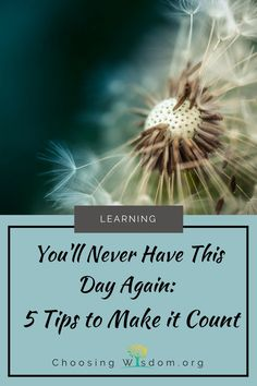 You'll Never Have This Day Again: 5 Tips to Make it Count - Choosing Wisdom