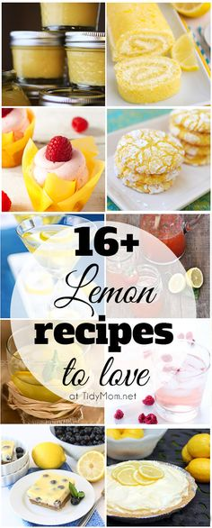 16+ Lemon Recipes to