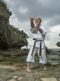 Master Self-Defense to Protect Yourself Chinese Martial Arts, Mixed Martial Arts, Taekwondo, Tai Chi, Shukokai Karate, Kung Fu, Kempo Karate, Okinawan Karate, Fight Techniques