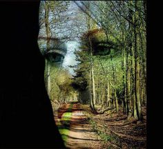 """""""Wald-Gesicht"""" (Face of the Forest) by Evelyn Munnes Art Timeline, Photos Originales, Illustration, All Nature, Nature Quotes, Human Nature, Illusion Art, Foto Art, New Energy"""