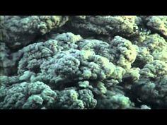 Como Funciona a Terra - S01E02 - Krakatoa - YouTube