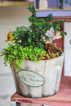 Amazing Fairy Garden Ideas
