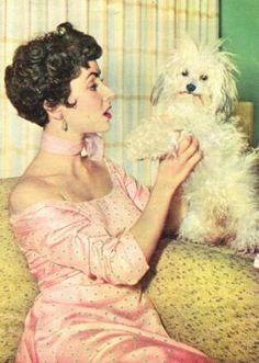 Poodles and their Famous People - Page 4 - Poodle Forum - Standard Poodle, Toy Poodle, Miniature Poodle Forum ALL Poodle owners too!