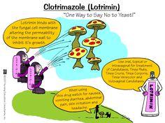 Clotrimazole (Lotrimin) – ONESTOPNURSING
