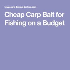 Cheap Carp Bait for Fishing on a Budget
