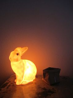 jeve: králík lampa
