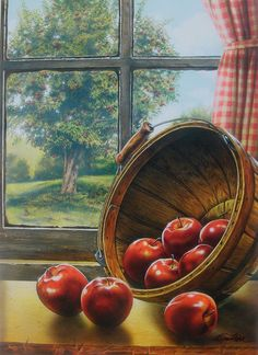 Country Primitive Apple Print Red Delicious Nice for an Apple Decorated Kitchen #Realism