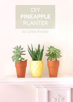 Tutorial Lines Across: DIY Succulent Pineapple Planter
