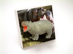 Hippo Childrens Light Switch