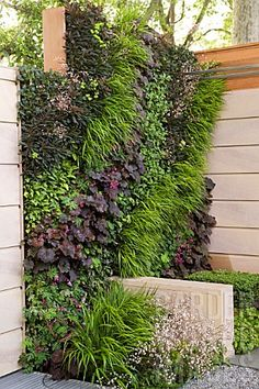 Living wall vertical garden designed by Ian Dexter, Sponsor Marshalls PLC I like the movement in the design. Modern Front Yard, Front Yard Design, Landscape Design, Garden Design, Garden Spaces, Walled Garden, Dream Garden, Big Garden, Easy Garden