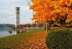 Furman University - Greenville South Carolina SC                                                                                 #JennyKnowsGreenvilleSCRealEstate #JennyRogersTesner   #GreenvilleSC