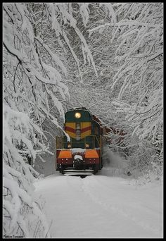 trains tracking through the snow, Diesel