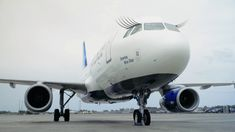 JetBlue Shantay Blue Stay Pride Branded Plane