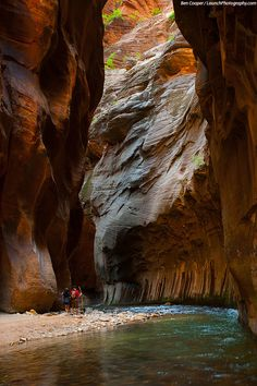 The Zion Narrows, Virgin River, Zion National Park photos Oh The Places You'll Go, Great Places, Beautiful Places, Places To Visit, Vacation Wishes, Vacation Ideas, American National Parks, Utah Usa, Park Photos