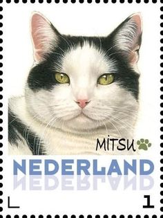 Stamp: Mitsu (Netherlands - Personalized stamps) (Cats, Francine van Westering) Col:NL 2015-305