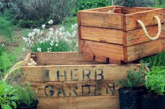 """Situated in the heart of the Midlands Meander, Peter's Gate Herb Farm was established in the winter of 1997. The name Peter's Gate implies """"a glimpse over heaven"""" and refers to the beautiful view over the Caversham valley. See www.midlandsmeander.co.za"""