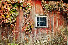 Rustic Autumn