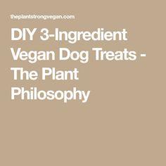 DIY 3-Ingredient Vegan Dog Treats - The Plant Philosophy