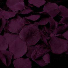 Plum Rose Petals (500 Count) #118
