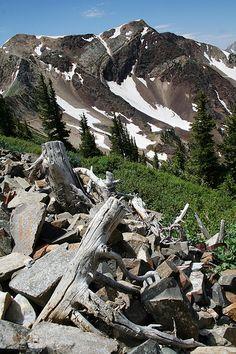 American Fork Twin Peaks, Utah by rarefruitfan, via Flickr I climbed this peak 7/7/12