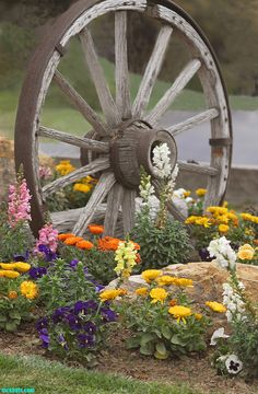 old wagon wheel and a pretty mix of flowers.