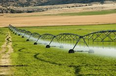 Irrigation System New Farm Bill Sneaks in Dangerous Fluoride Amendment   Should be against the law to just slip amendments in, hoping no one will notice....
