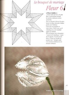 Albumarchief Bobbin Lace Patterns, Knitting Patterns, Bobbin Lacemaking, Victorian Lace, Lace Jewelry, Needle Lace, Lace Embroidery, Lace Collar, Lace Making