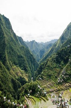 The Batad rice terraces belong to the UNESCO World Heritage Site 'Rice Terraces of the Philippine Cordilleras'. This site is located in the Philippines. Rice Terraces, Top Place, Group Travel, Yoga Retreat, Southeast Asia, Travel Guides, Philippines, Around The Worlds, Explore
