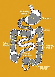 Meals-Backed-Up-In-The-Colon-Graphic
