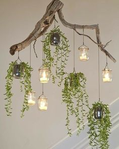Beautiful green chandelier made of driftwood. upcycle upcycling driftwood chandeli… - UPCYCLING IDEASBeautiful green chandelier made of driftwood., driftwood 31 Upcycling Home Decor Ideas for Your Diy Upcycling, Upcycle, Driftwood Chandelier, Green Chandeliers, Diy Home Decor Rustic, Deco Nature, Ideas Hogar, Diy Interior, Home Pictures