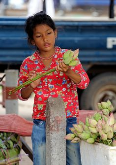 Selling lotus flowers at the market, Siem Reap, Cambodia https://www.flickr.com/photos/photox0906/8665304778/