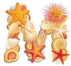 Escuela infantil castillo de Blanca: ALFABETO CON CONCHAS Alphabet Art, Alphabet And Numbers, Sea Crafts, Fall Crafts, Lettering Design, Hand Lettering, Decoupage, Scrapbook Letters, Hawaian Party